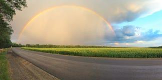 Arco iris sobre un campo de girasoles Imagen de archivo libre de regalías
