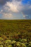 Arco iris y tundra Fotos de archivo libres de regalías