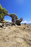 Arco natural. Fotografia de Stock Royalty Free