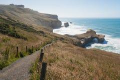 Arco natural en la playa del túnel, Dunedin, Nueva Zelanda Imagen de archivo
