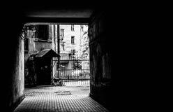 Arco oscuro Foto de archivo libre de regalías