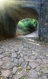 Arco in parco Fotografia Stock Libera da Diritti