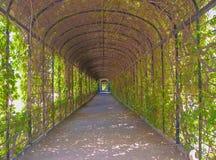 Arco verde Fotografía de archivo