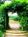 Arco verde Fotografie Stock Libere da Diritti