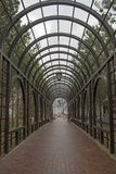 Arco verde nel parco Immagine Stock Libera da Diritti