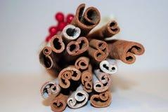 Arco y bayas de los palillos de canela de la Navidad Imagen de archivo