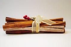Arco y bayas de los palillos de canela de la Navidad Foto de archivo libre de regalías