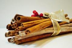 Arco y bayas de los palillos de canela de la Navidad Imagen de archivo libre de regalías