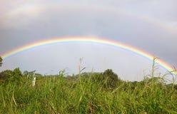 Arcobaleno brillantemente colorato che allunga sopra gli alberi verdi Immagini Stock Libere da Diritti