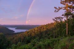 Arcobaleno che si piega un pino torreggiante al tramonto immagine stock