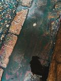 Arcobaleno dello stagno Fotografia Stock Libera da Diritti