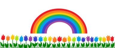Arcobaleno e tulipani Immagini Stock Libere da Diritti