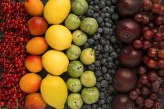 Arcobaleno fatto di frutta Immagine Stock Libera da Diritti