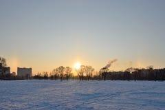 Arcobaleno soleggiato di inverno di alone nel parco di inverno Fotografia Stock Libera da Diritti