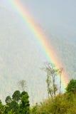 Arcobaleno sopra la foresta immagini stock