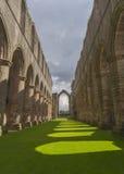 Arcos de la abadía de las fuentes Imagen de archivo libre de regalías