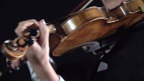 Arcos de la muchacha sobre las secuencias de un violín Fondo negro Cierre para arriba almacen de metraje de vídeo