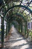 Arcos del enrejado en el estado de Arkhangelskoye Fotografía de archivo libre de regalías