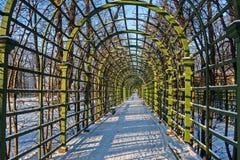 Arcos para plantas no jardim do verão de St Petersburg Imagens de Stock Royalty Free
