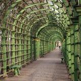 Arcos verdes escénicos en el jardín St Petersburg del verano Imagenes de archivo