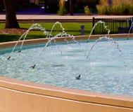 Arcs de fontaine d'eau bleue en parc Photographie stock libre de droits