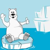 Arctic Stock Photos