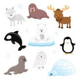 Arctic Animal Set. Collection of cute arctic animals stock illustration