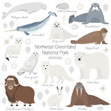 Arctic animal set. White polar bear, narwhal, whale, musk ox, seal, walrus, arctic fox, ermine, rabbit, arctic hare stock illustration