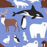 Arctic animals cartoon vector polar bear or penguin character collection with whale reindeer and seal in snowy winter royalty free illustration