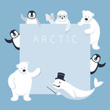 Arctic Animals Characters Show Presentation, Frame Stock Image