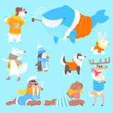 Arctic Animals Dressed In Human Clothes Set Of Illustrations vector illustration