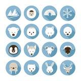 Arctic Animals Flat Icons Set Stock Photography