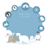 Arctic Animals and Icons Frame Royalty Free Stock Image