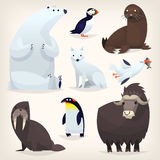 Arctic animals set. Colorful cartoon arctic animals from polar region and Arctic Circle royalty free illustration