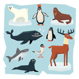 Arctic and Antarctic Animals, Fish Set Stock Photos