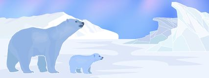 Arctic background with polar bears Stock Photo