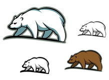 Arctic bears Royalty Free Stock Photography