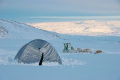 Arctic camping. Tent and dog sledge on a glacier, Greenland stock photo