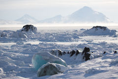 Arctic climate Royalty Free Stock Images