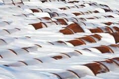 Arctic coast pollution - rusty fuel barrels Royalty Free Stock Photo