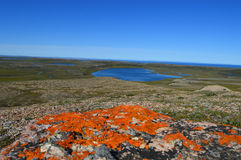 Arctic Coastline. Looking over the  bright orange lichen and tundra lakes to Darnley Bay in the Edmundson Gulf on the Arctic Ocean Stock Photos
