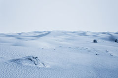 Arctic desert. Stock Image