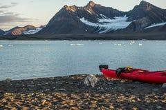 Arctic fox near a kayak Stock Photo