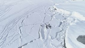 Arctic gentoo penguin jump over ice crack aerial. View. South Pole Bird Group Walk on Snow Covered Peninsula Snow Covered Coast Landscape. Antarctica Wildlife stock footage