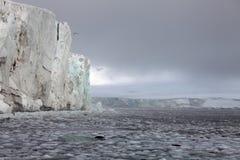 Arctic glacier Royalty Free Stock Photos