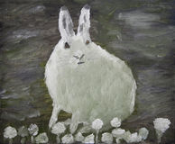 Arctic hare painting. Oil painting of an arctic hare Royalty Free Stock Photography