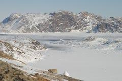 Arctic  ice Stock Photos