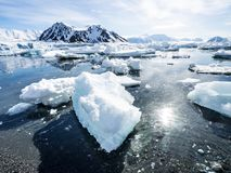 Arctic landscape - glaciers and mountains - Spitsbergen Stock Photography