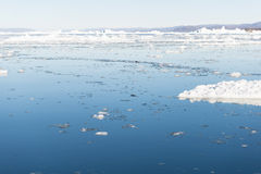 Arctic landscape in Greenland Royalty Free Stock Photo