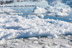 Arctic landscape in Greenland Royalty Free Stock Image